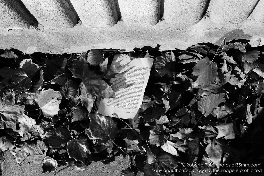 El autor y su obra, lecturas entre hojas